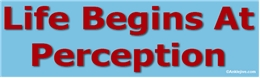 Life Begins At Perception Liberal Progressive Laptop/Window/Bumper Sticker